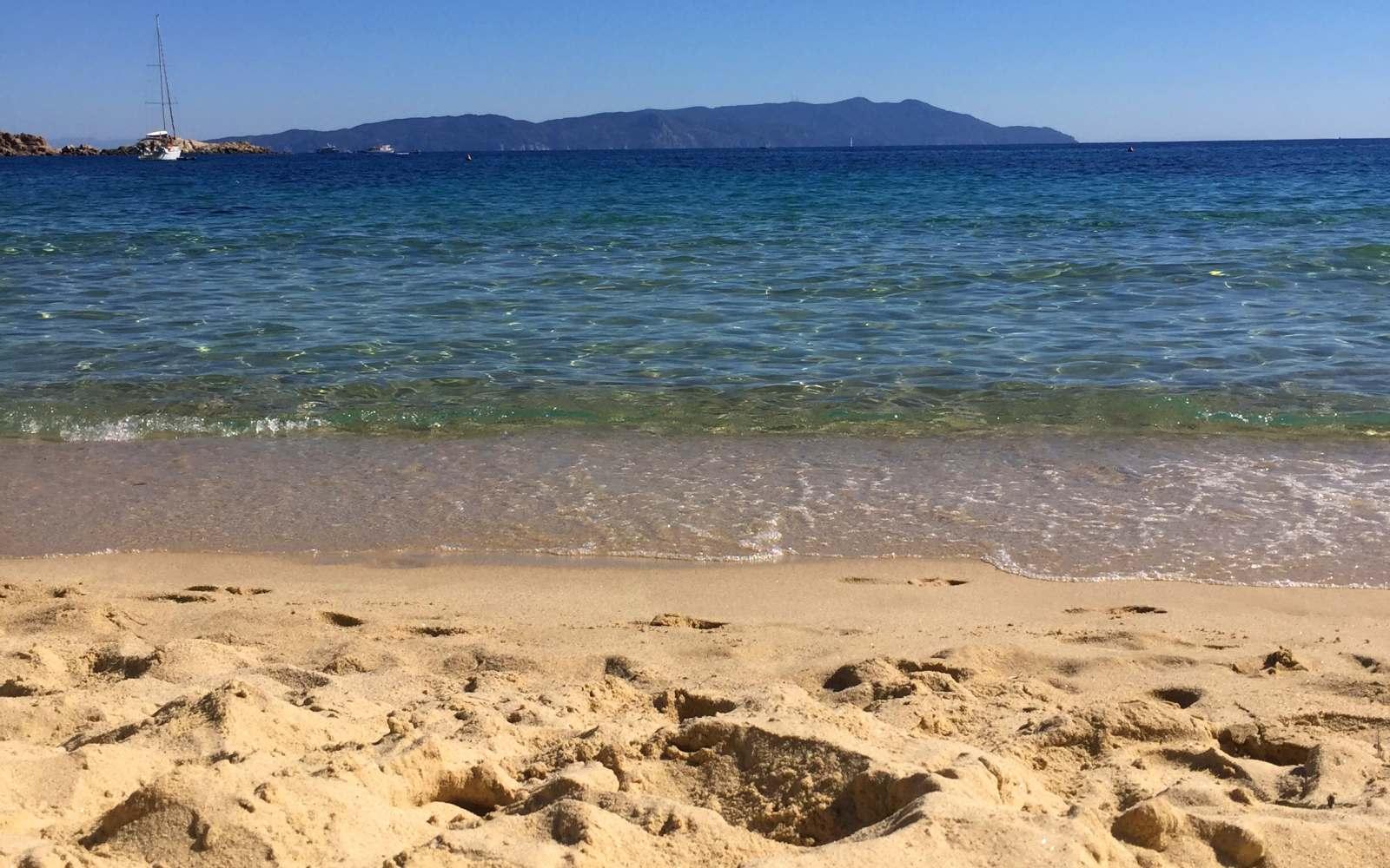 sabbia spiaggia delle cannelle isola del giglio